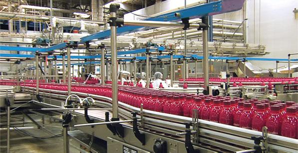 nopalea factory